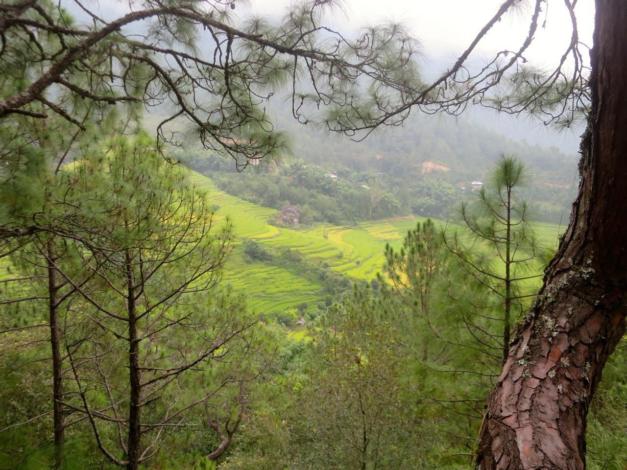 Bhutan 2 06