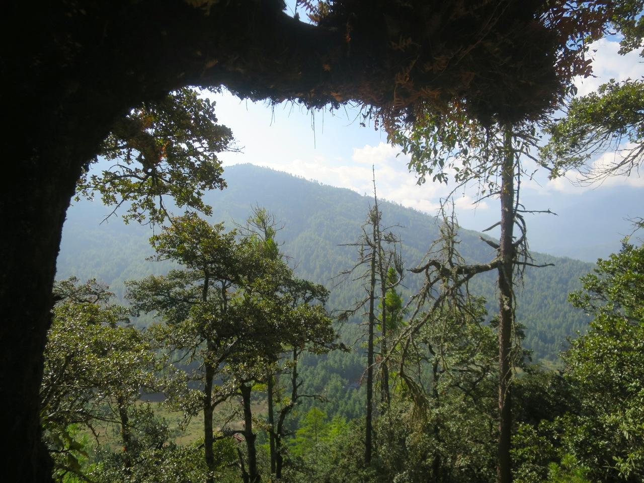 Bhutan 6 09