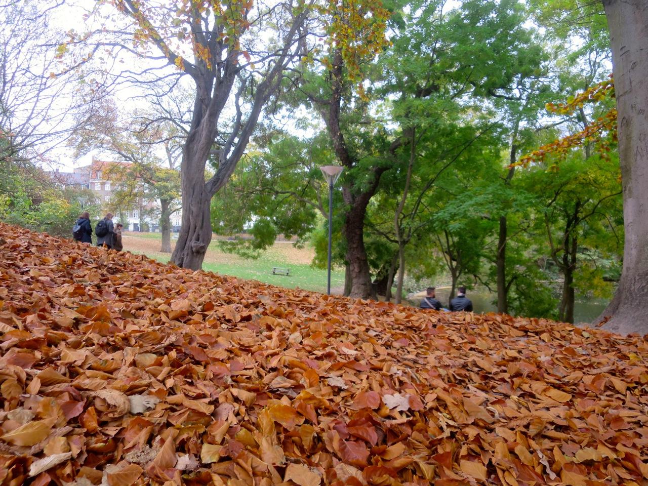 Copenhague outono 1 02
