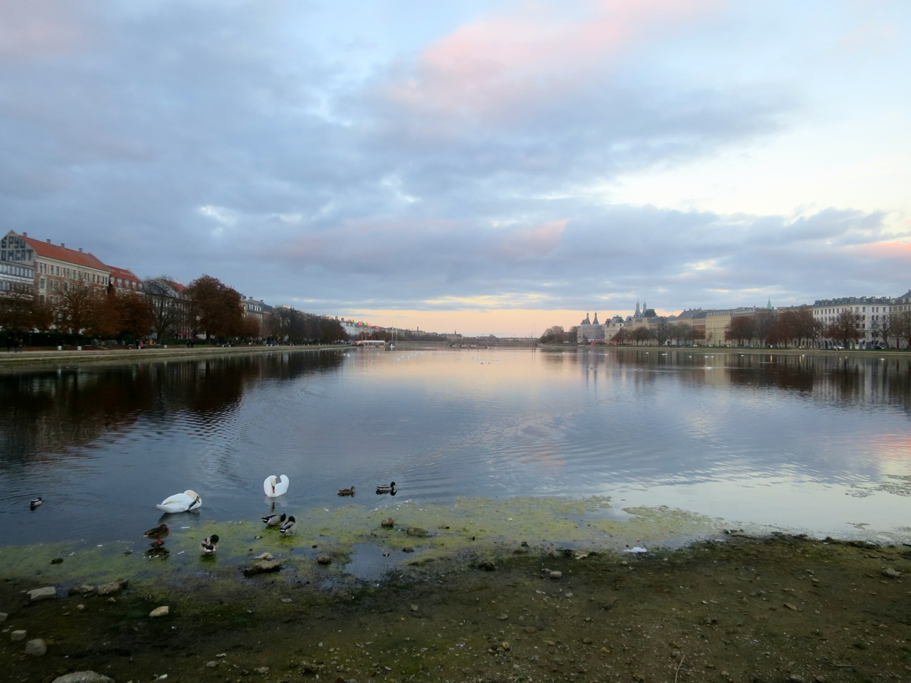 Copenhague outono 1 13