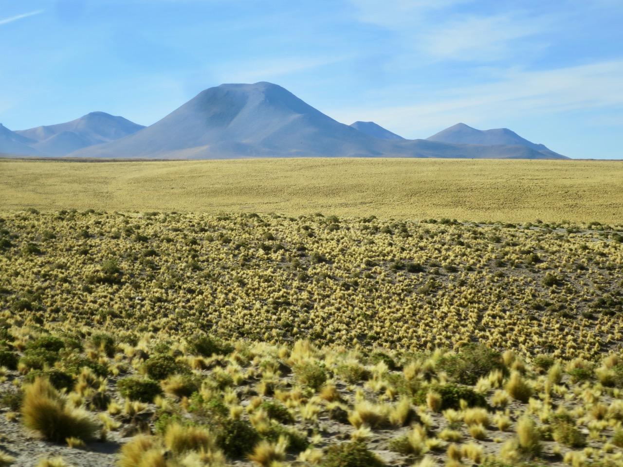 Atacama 2 03