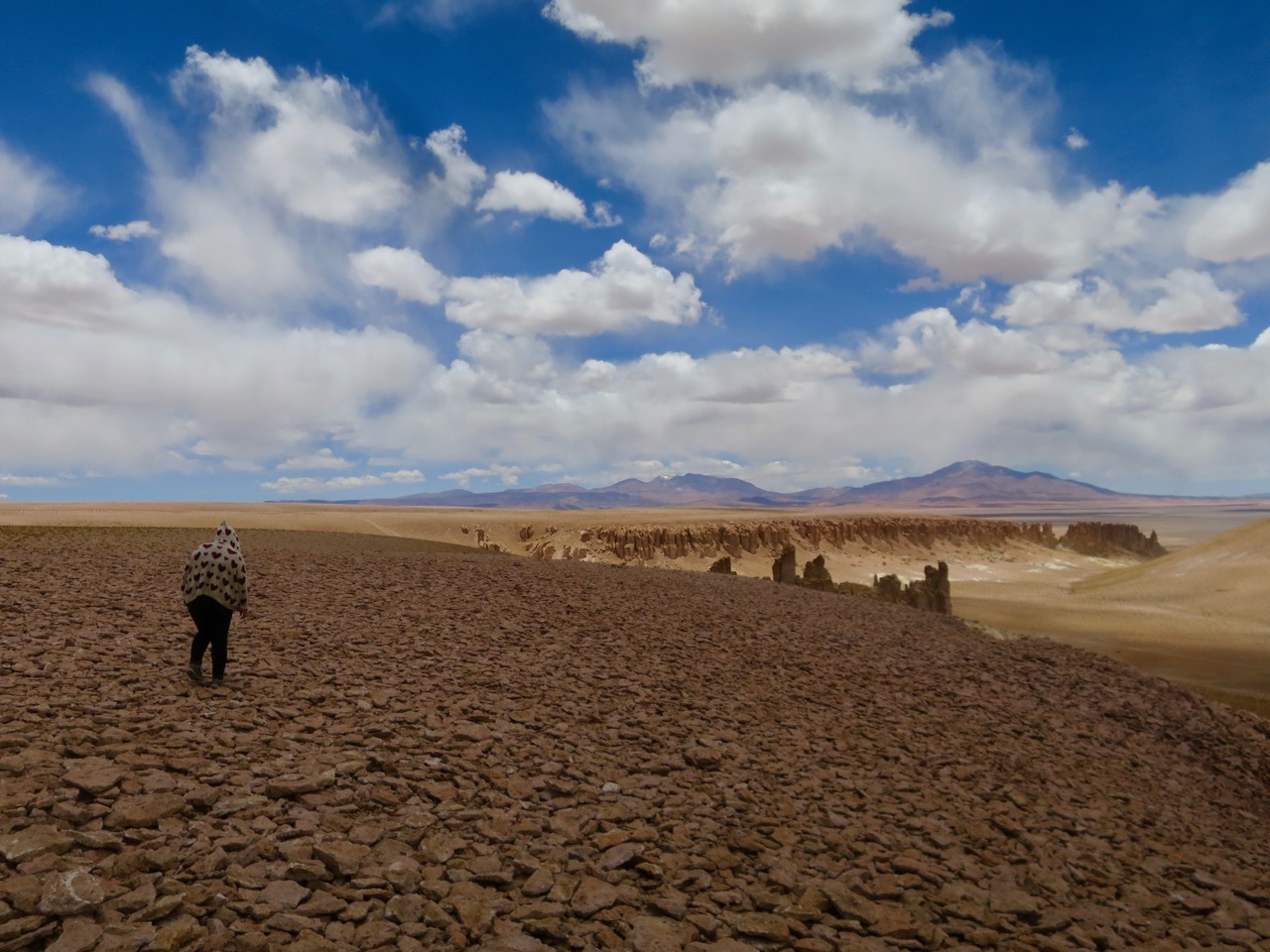 Atacama 2 16