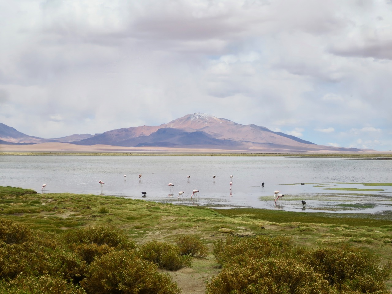 Atacama 2 22