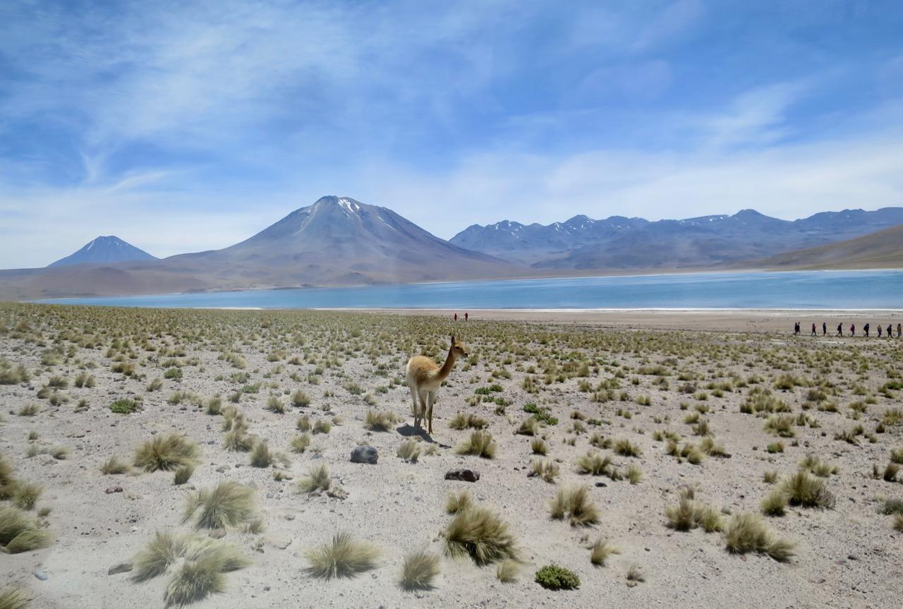 Atacama 3 11