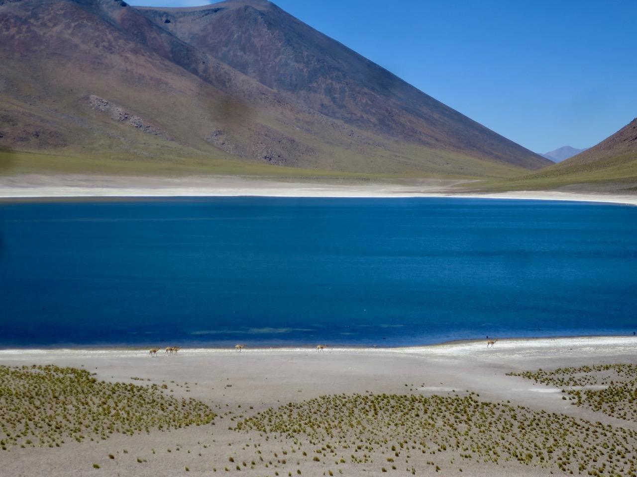 Atacama 3 13