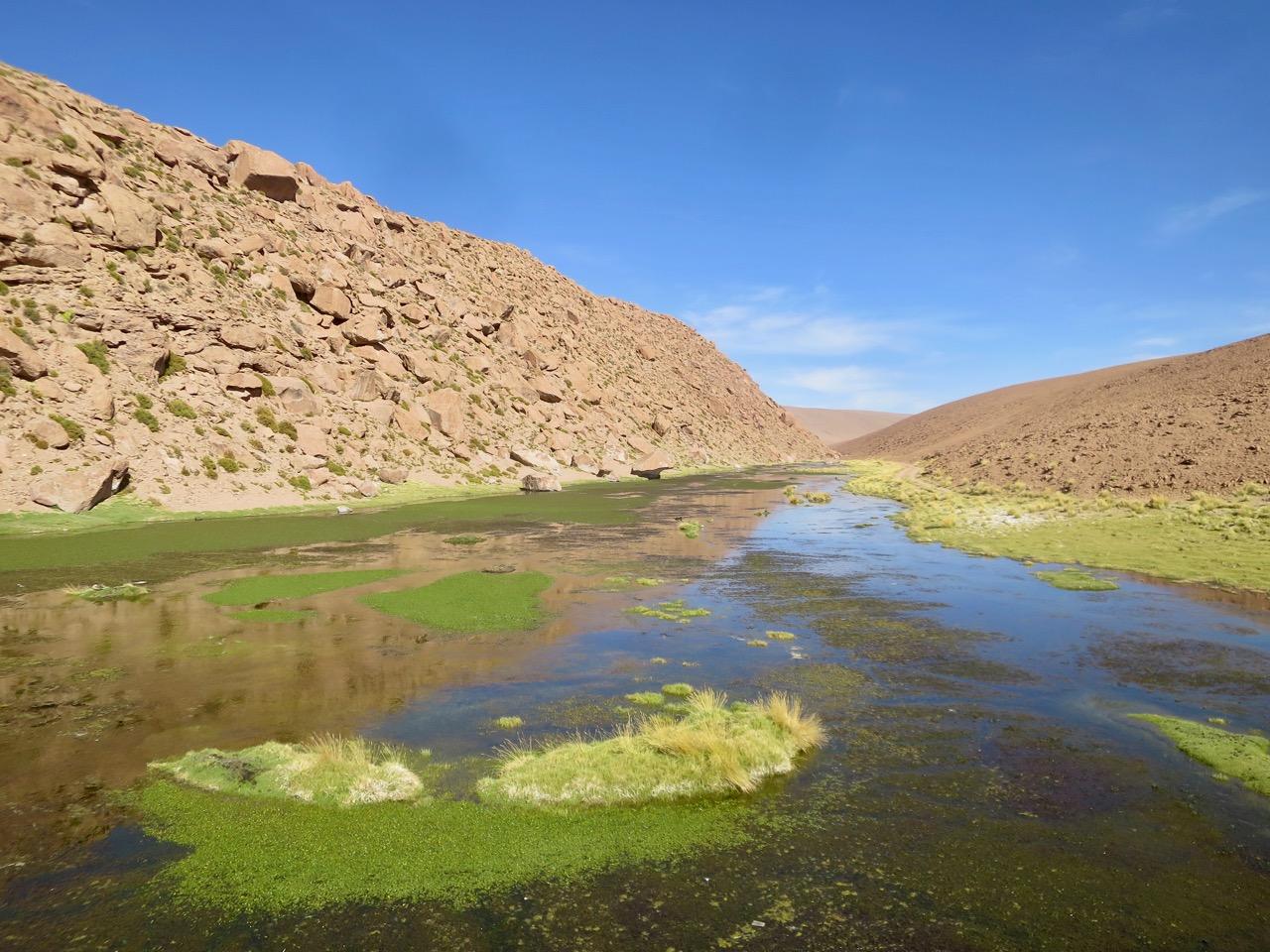 Atacama 4 12