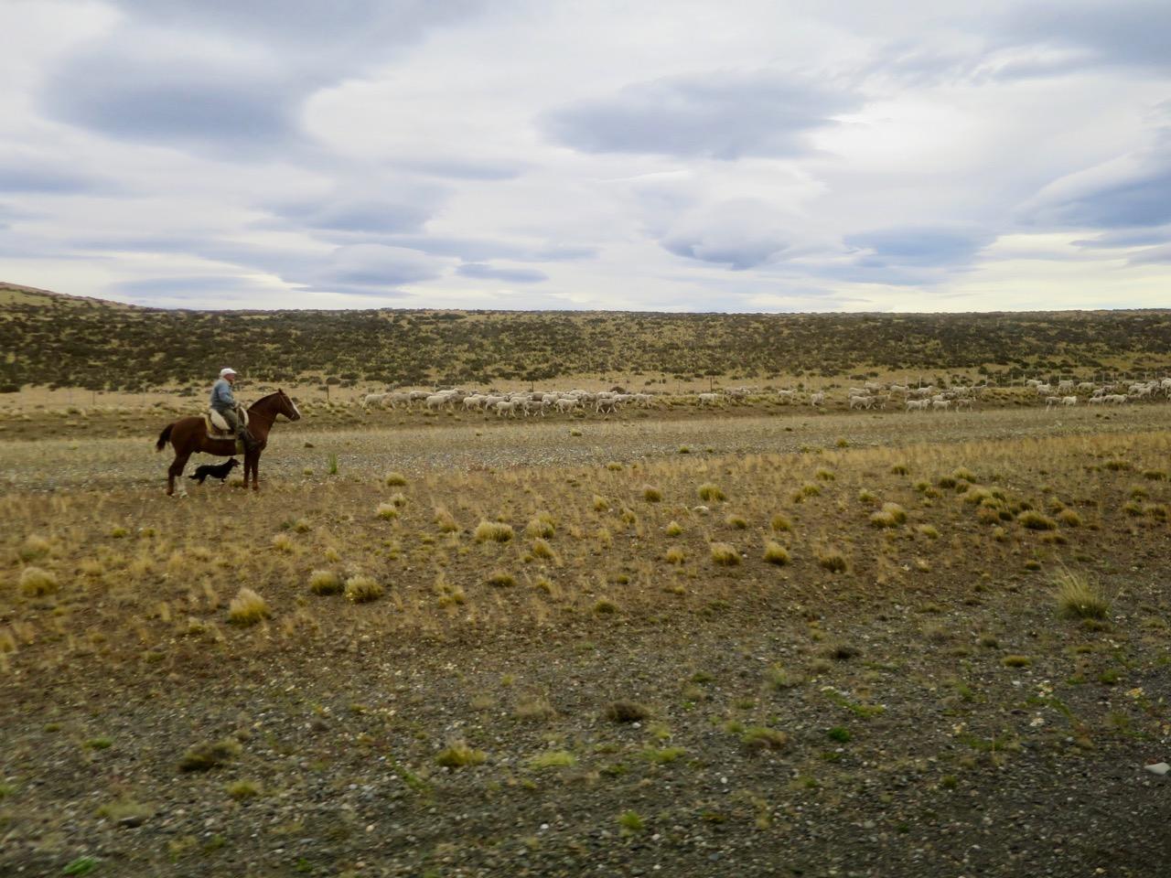 Perito Moreno 1 05