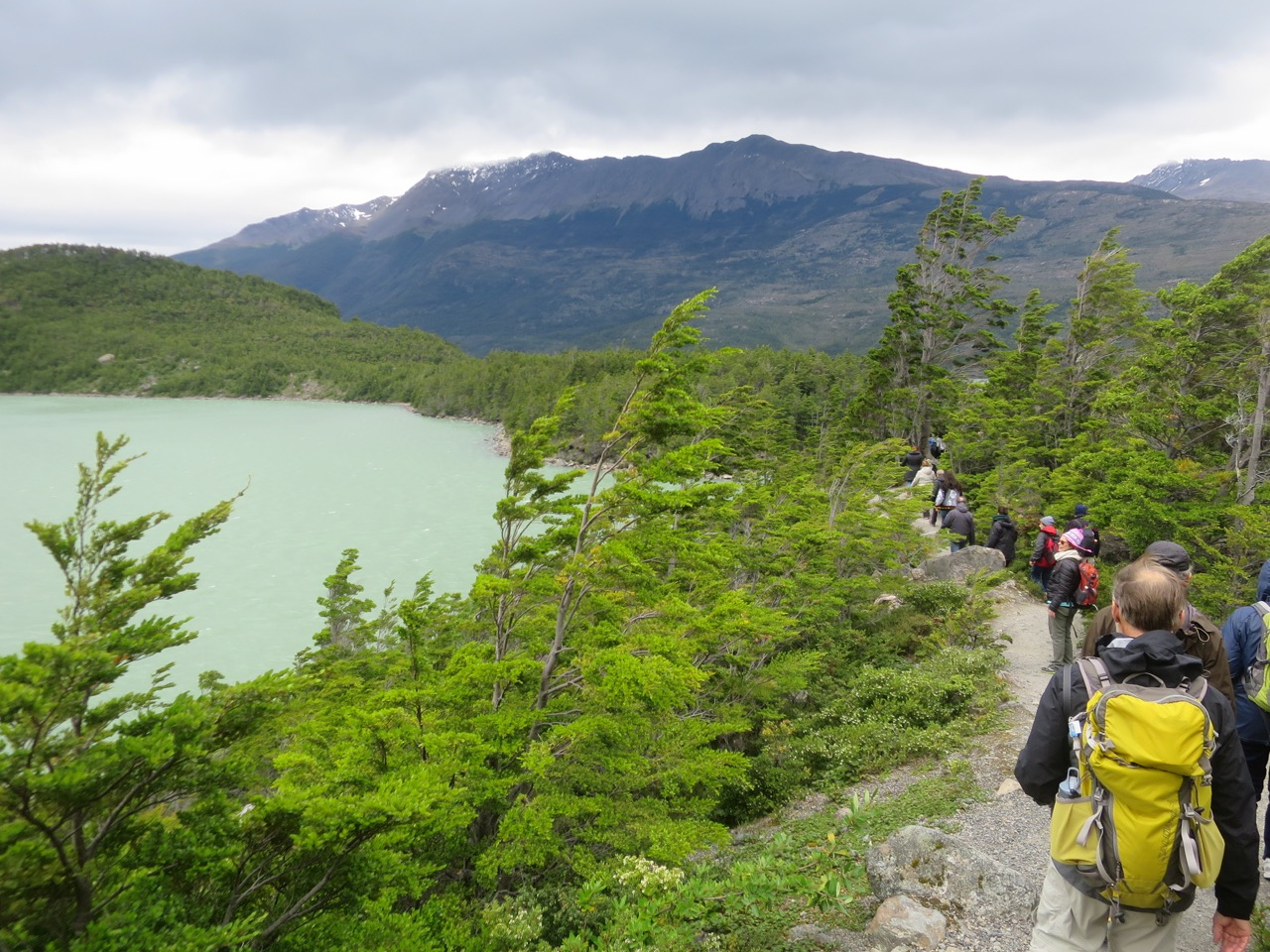 Puerto Natales 1 08