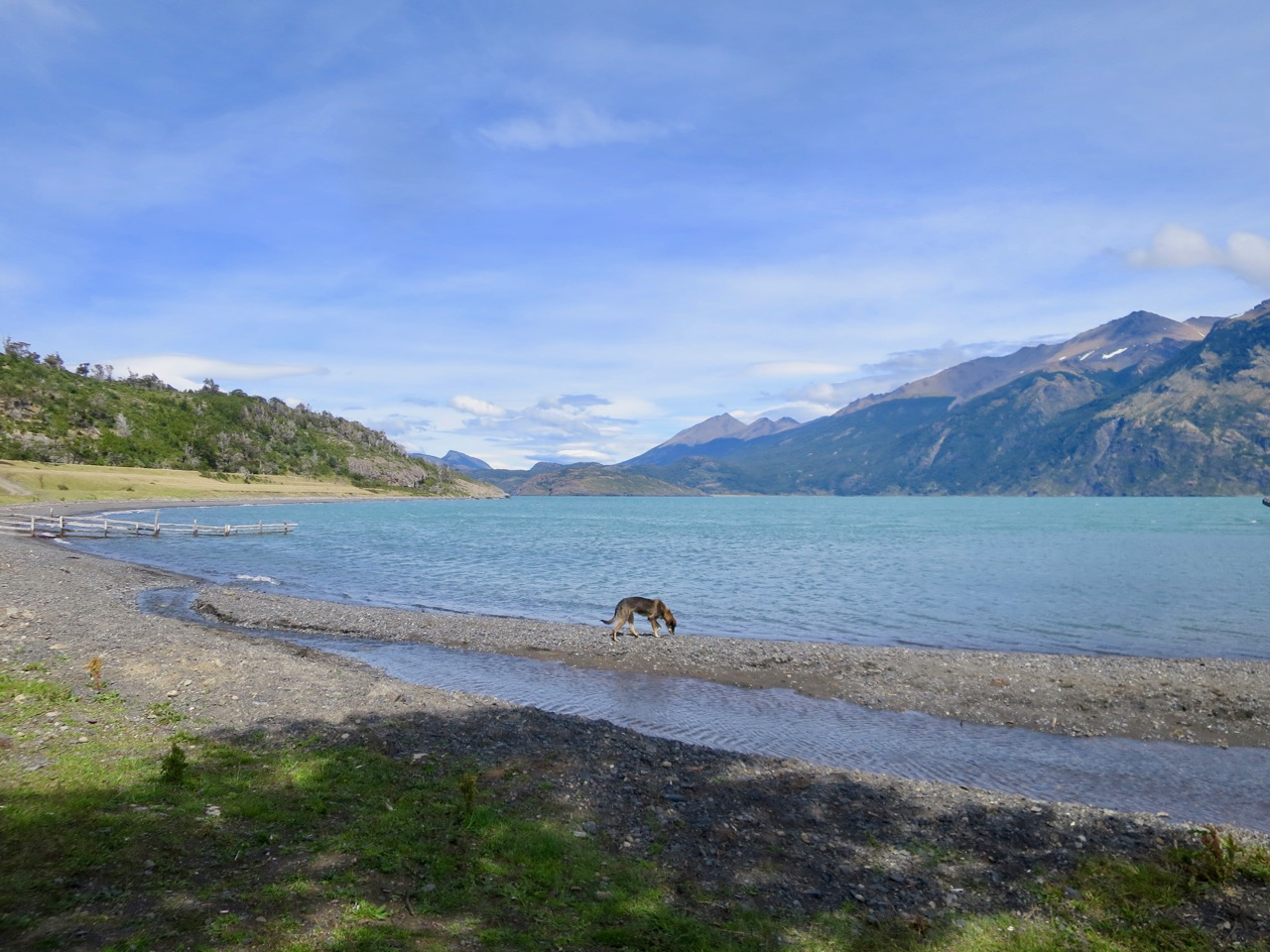 Puerto Natales 1 28