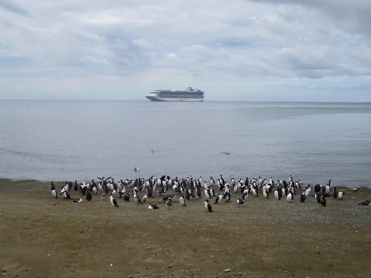 Punta Arenas 1 22