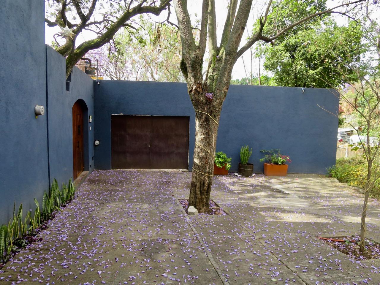 Oaxaca 1 07