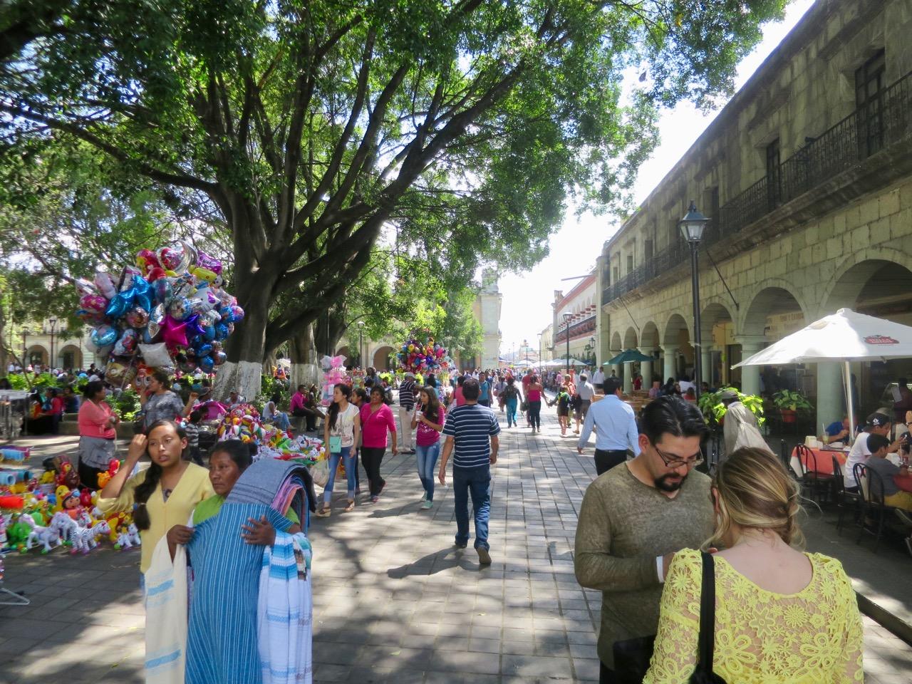 Oaxaca 1 13