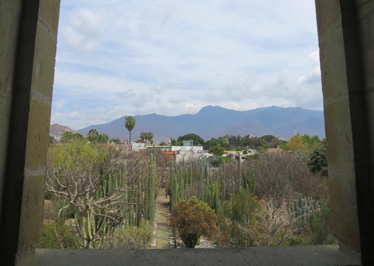 Oaxaca 1 20