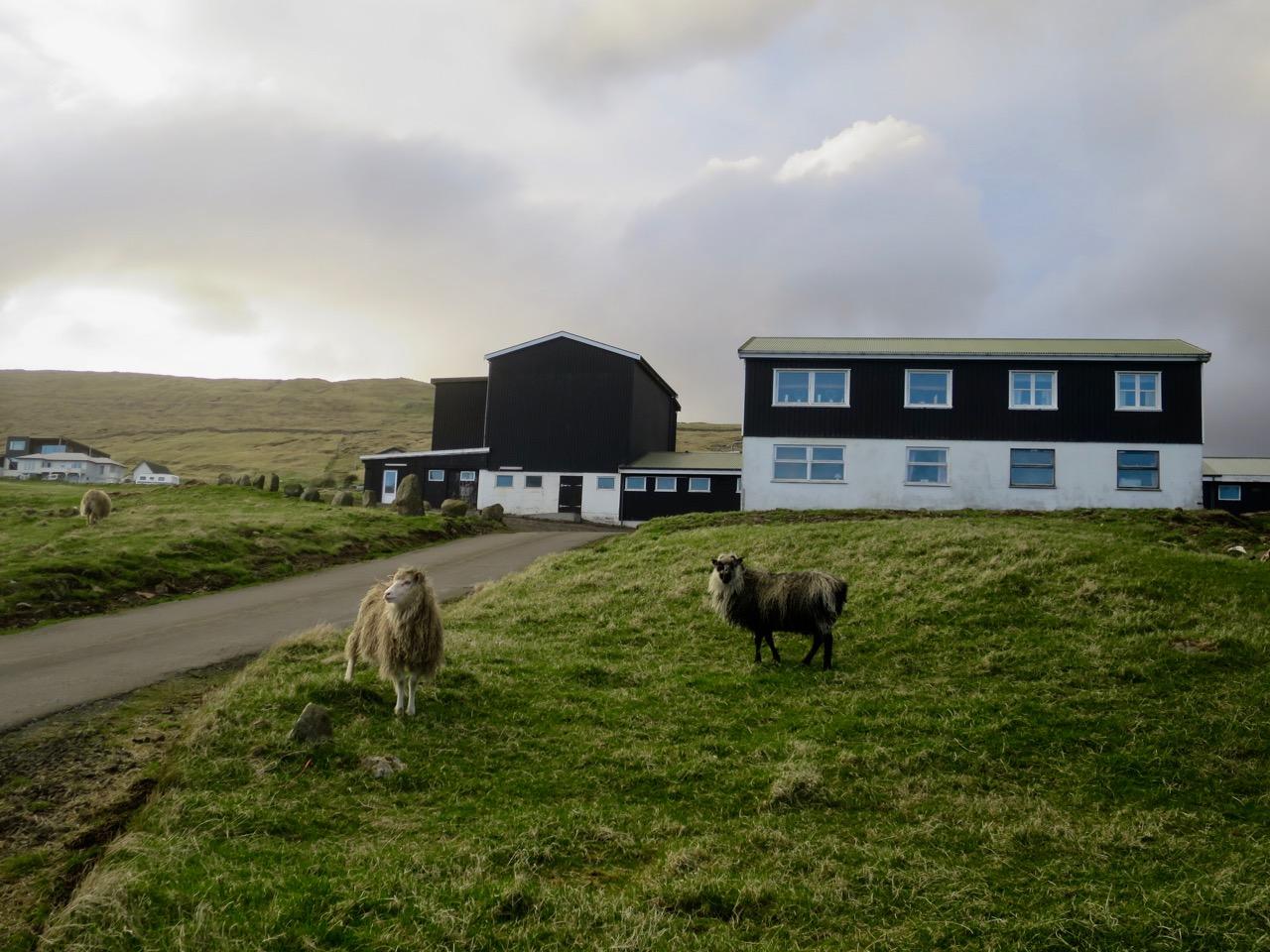 Ilhas Faroe 1 14