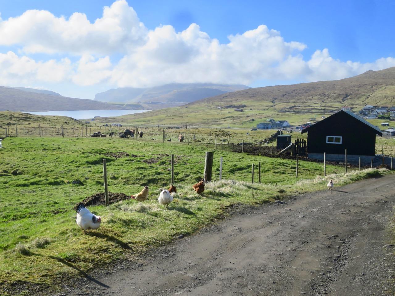 Ilhas Faroe 1 42