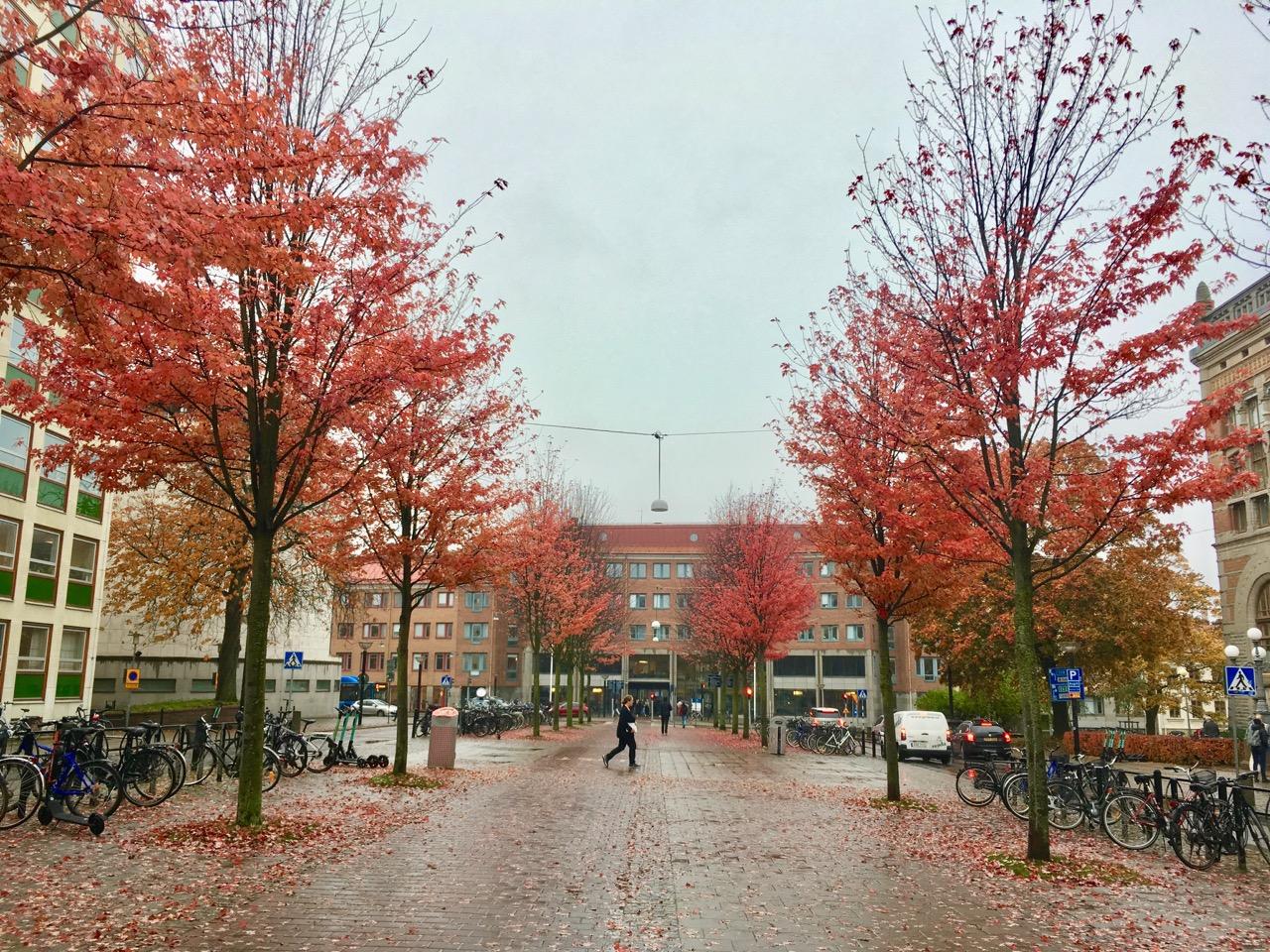 Gothenburg 2 17