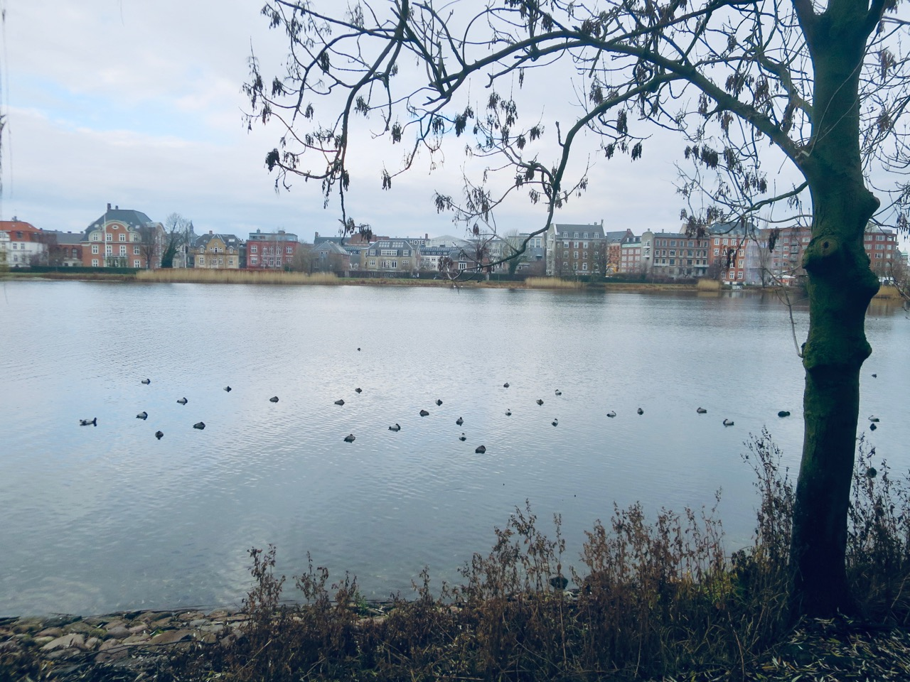 Copenhague 2 05