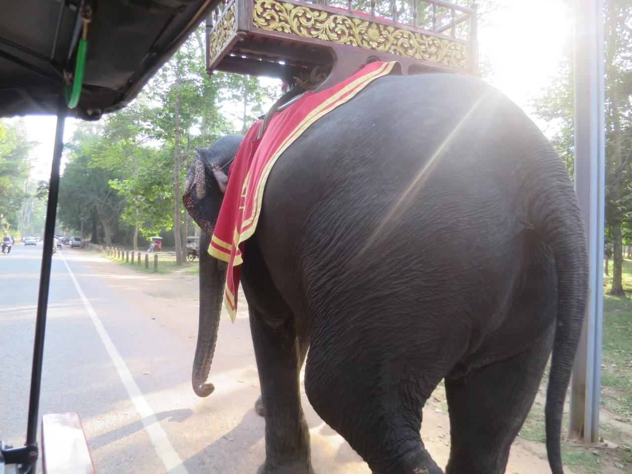 Angkor Wat 1 03