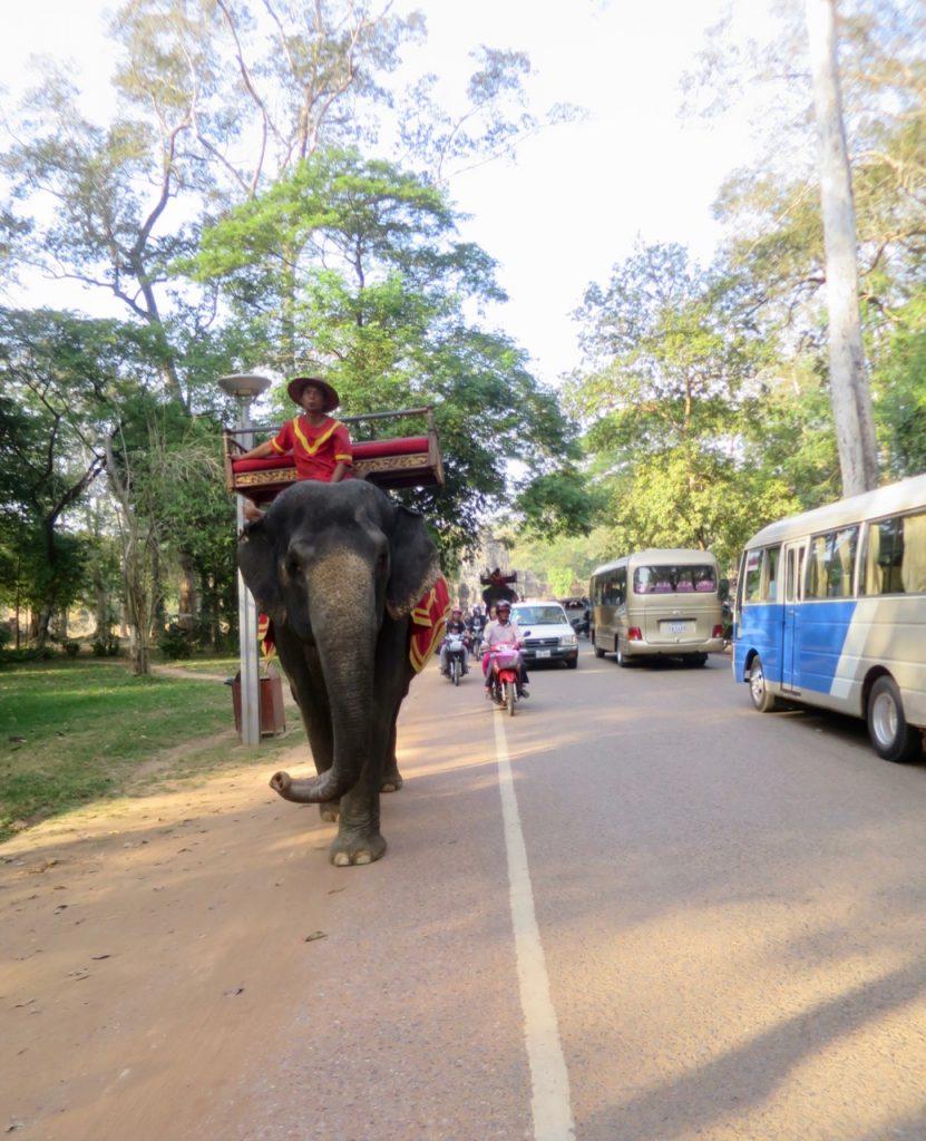 Angkor Wat 1 04