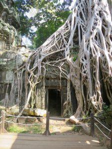 Complexo Angkor 1 02