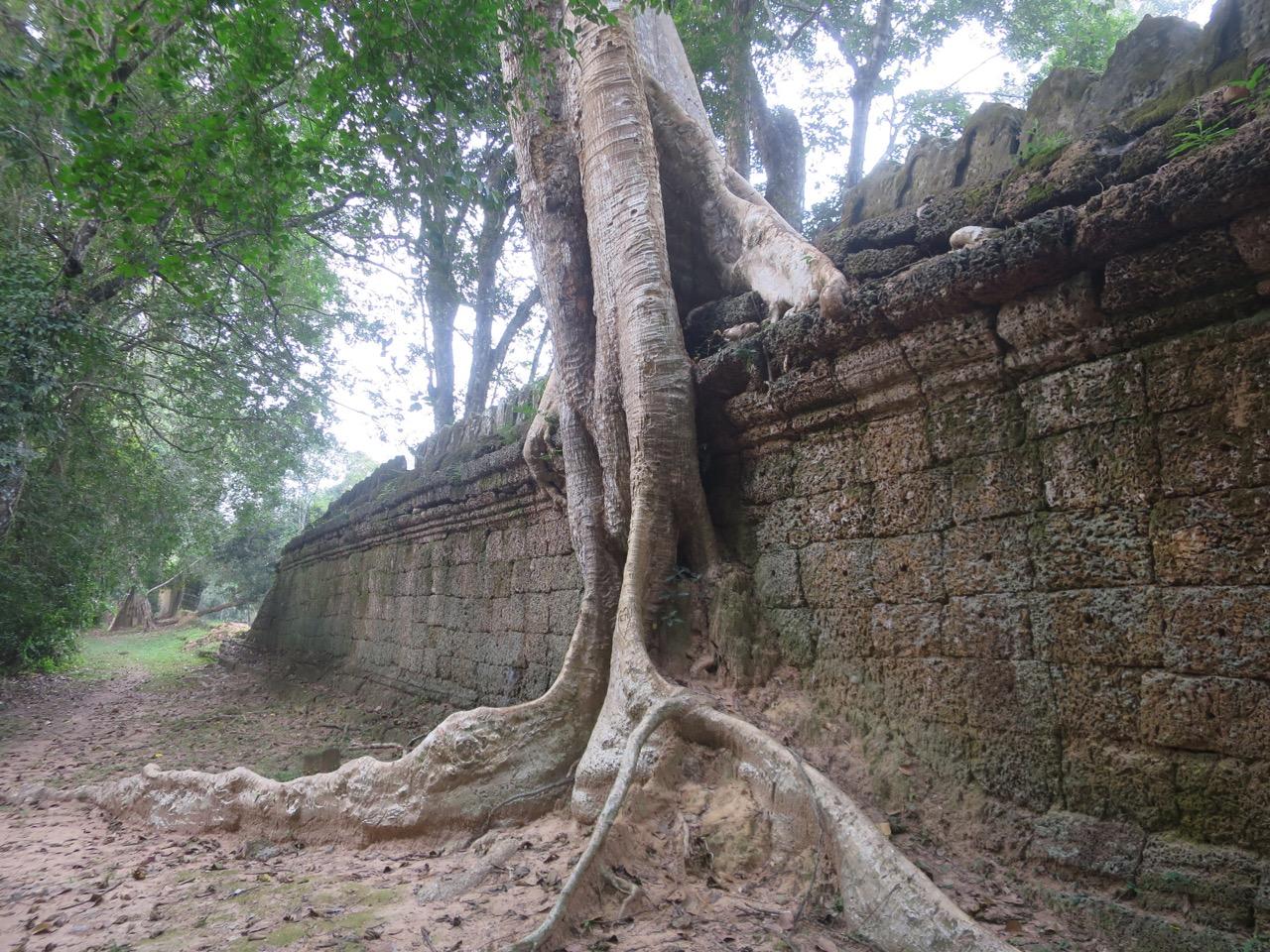 Preah Khan 1 15
