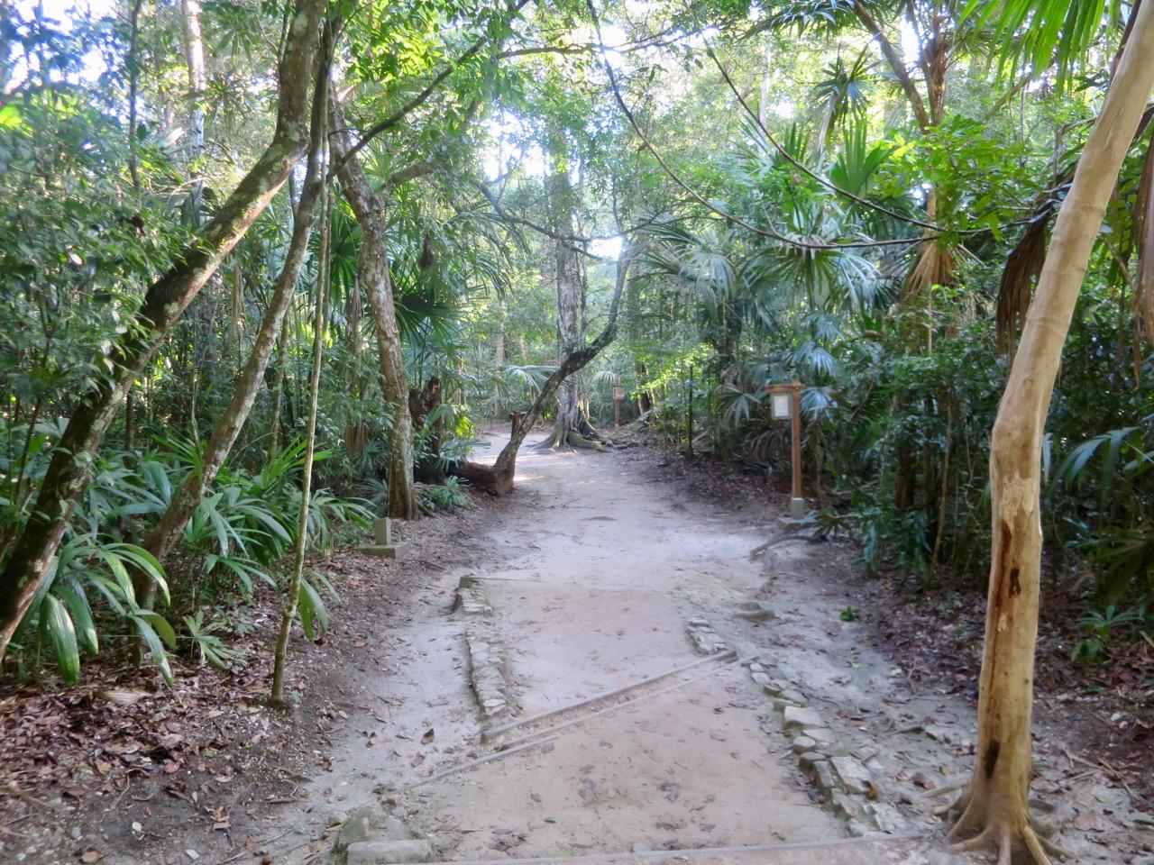 Tikal 1 08