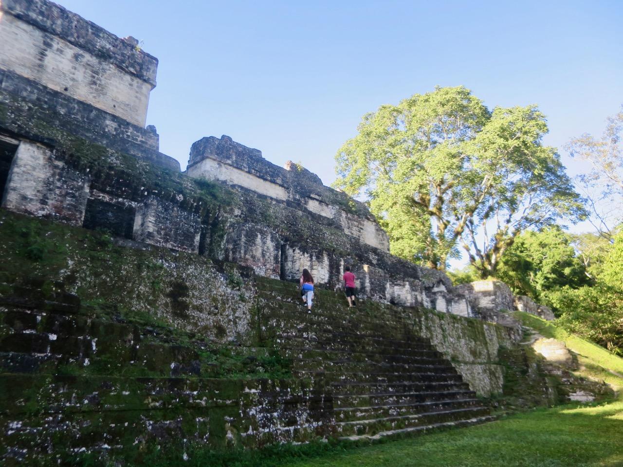 Tikal 1 11