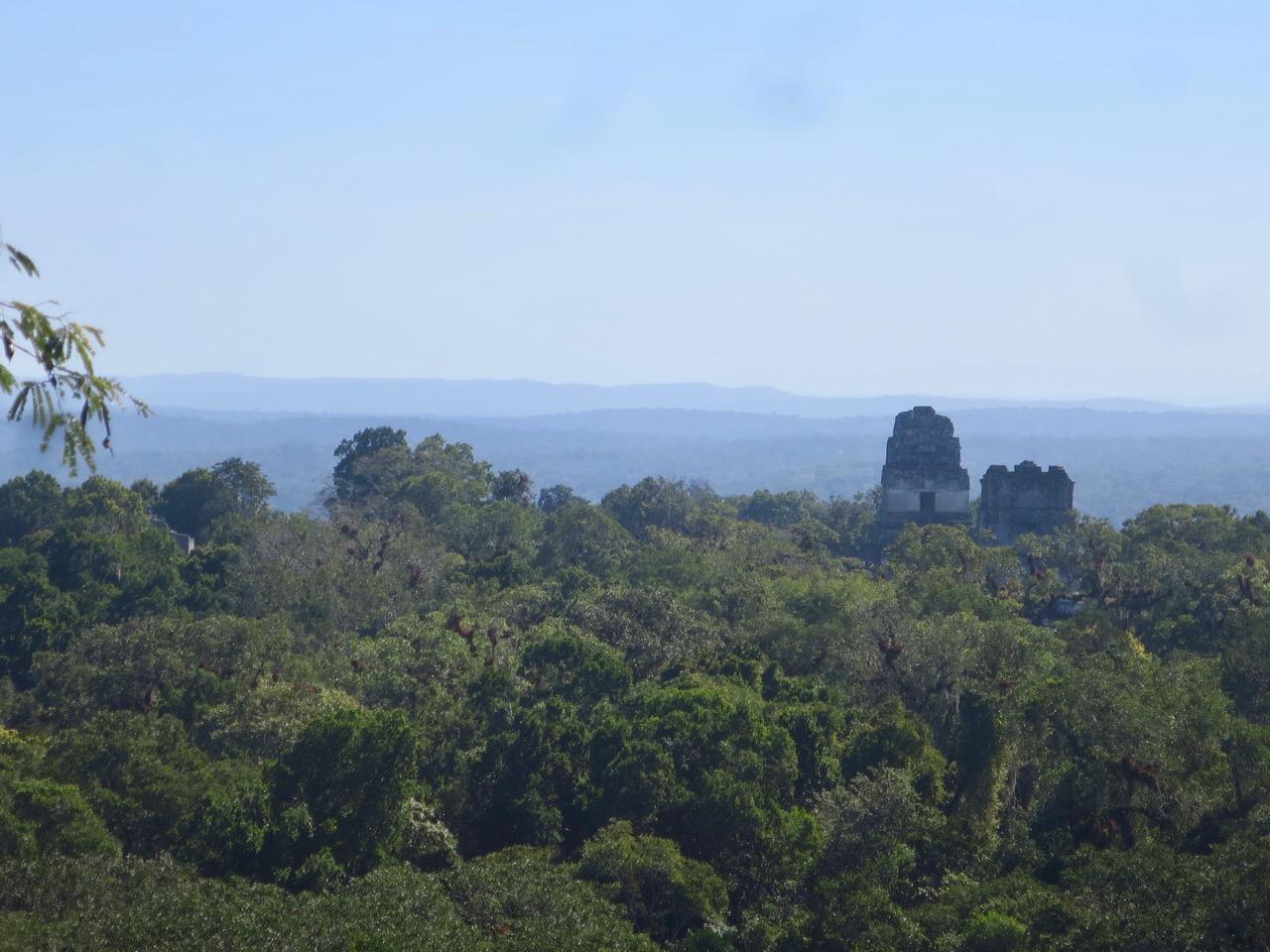 Tikal 1 20
