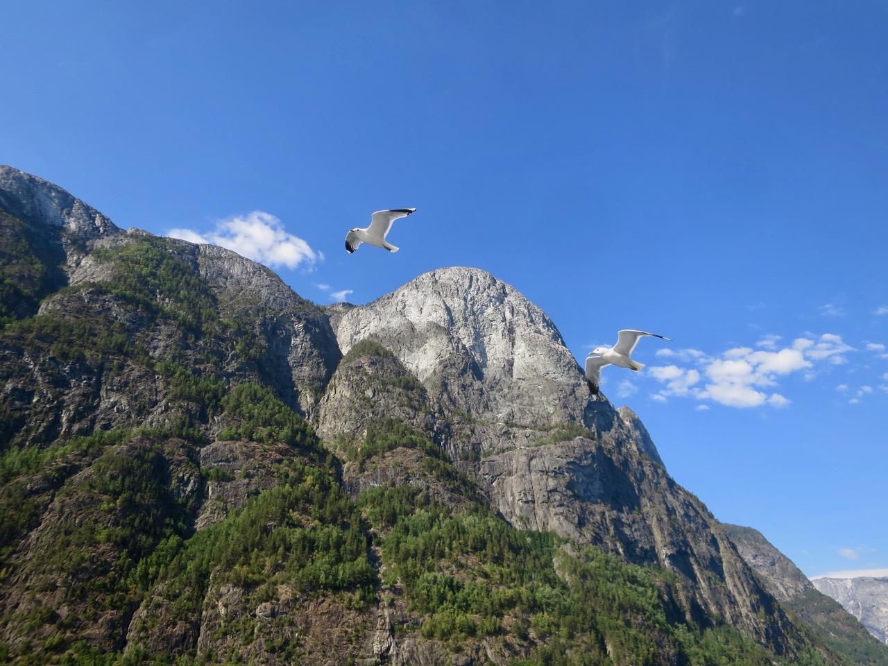 Paisagens Noruega 1 14