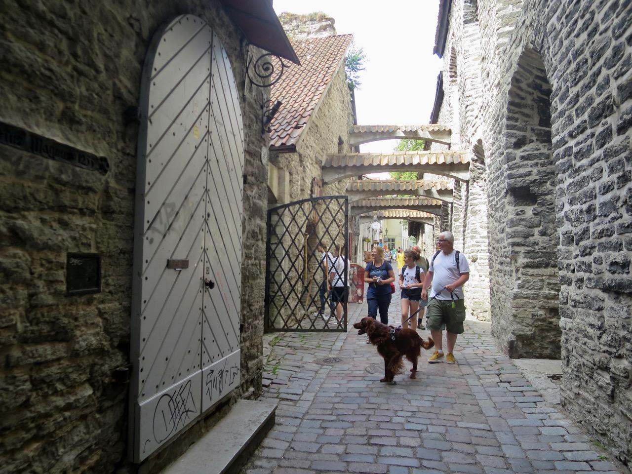 Tallinn 1 10