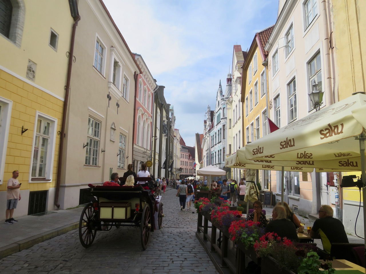 Tallinn 1 31