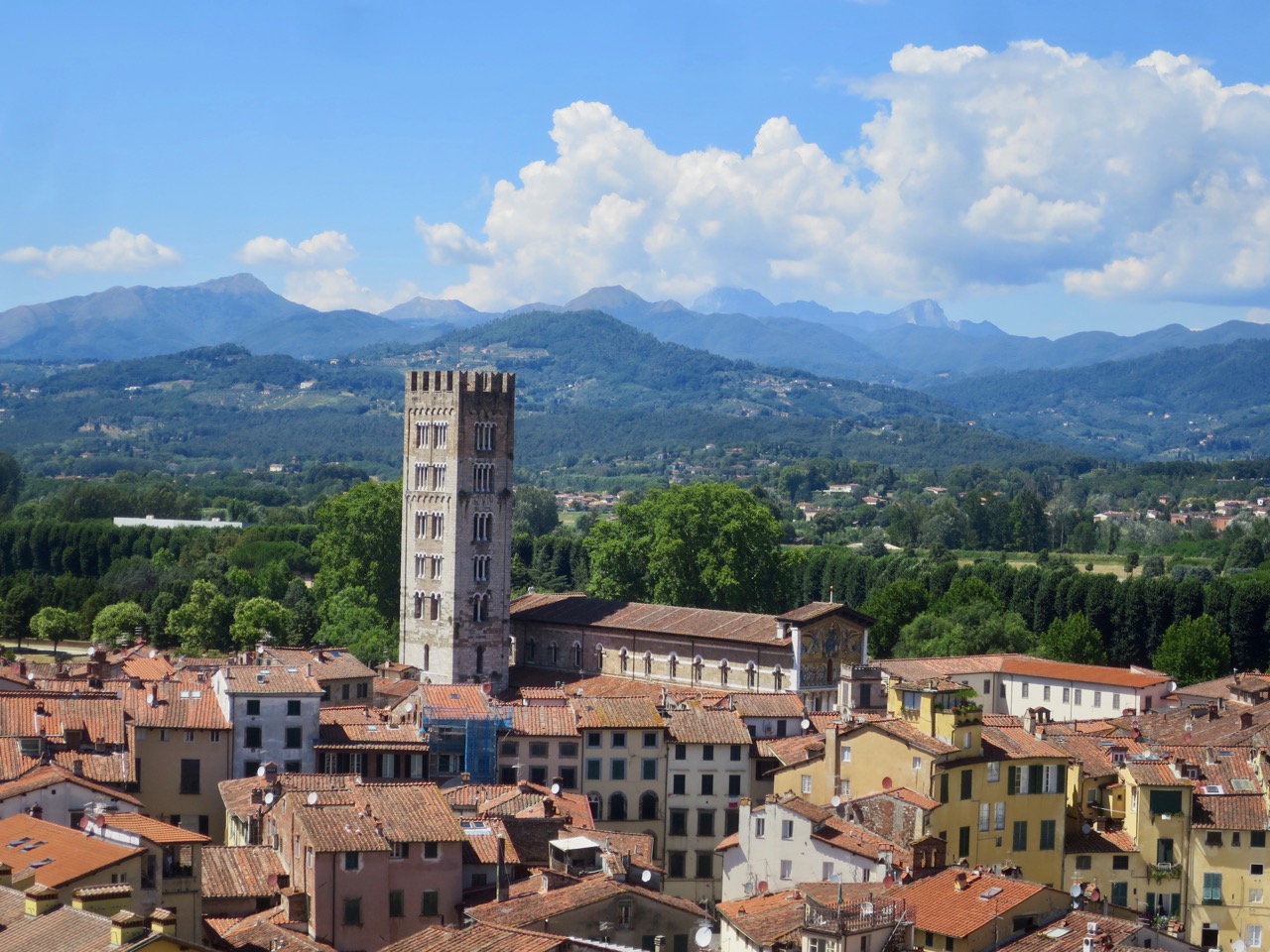 Lucca 1 19