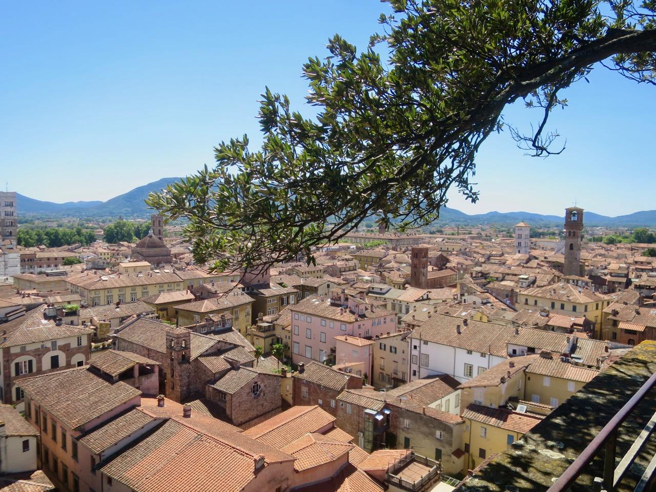 Lucca 1 20