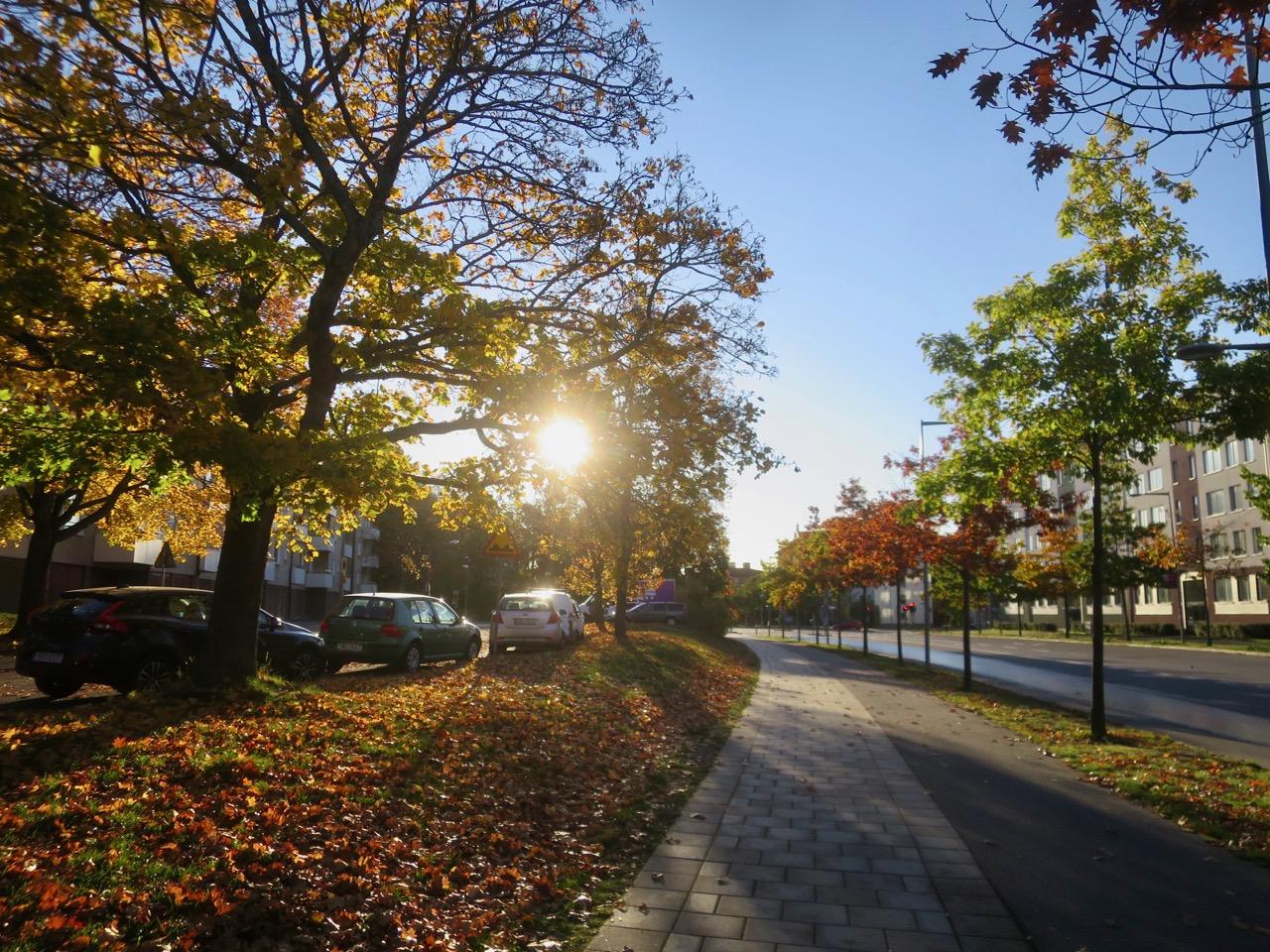 Outono Estocolmo 1 02