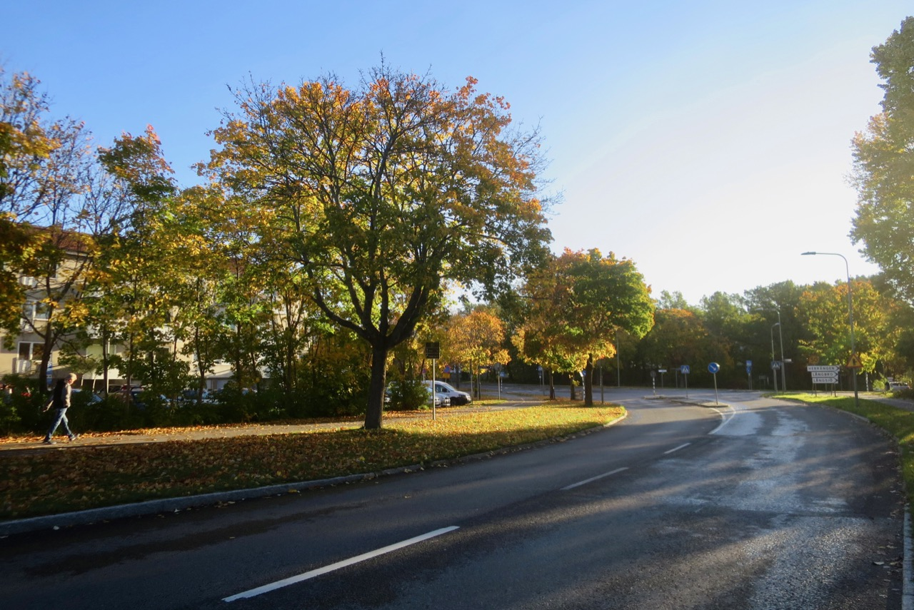 Outono Estocolmo 1 04