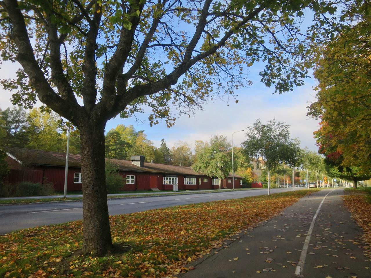 Outono Estocolmo 1 18