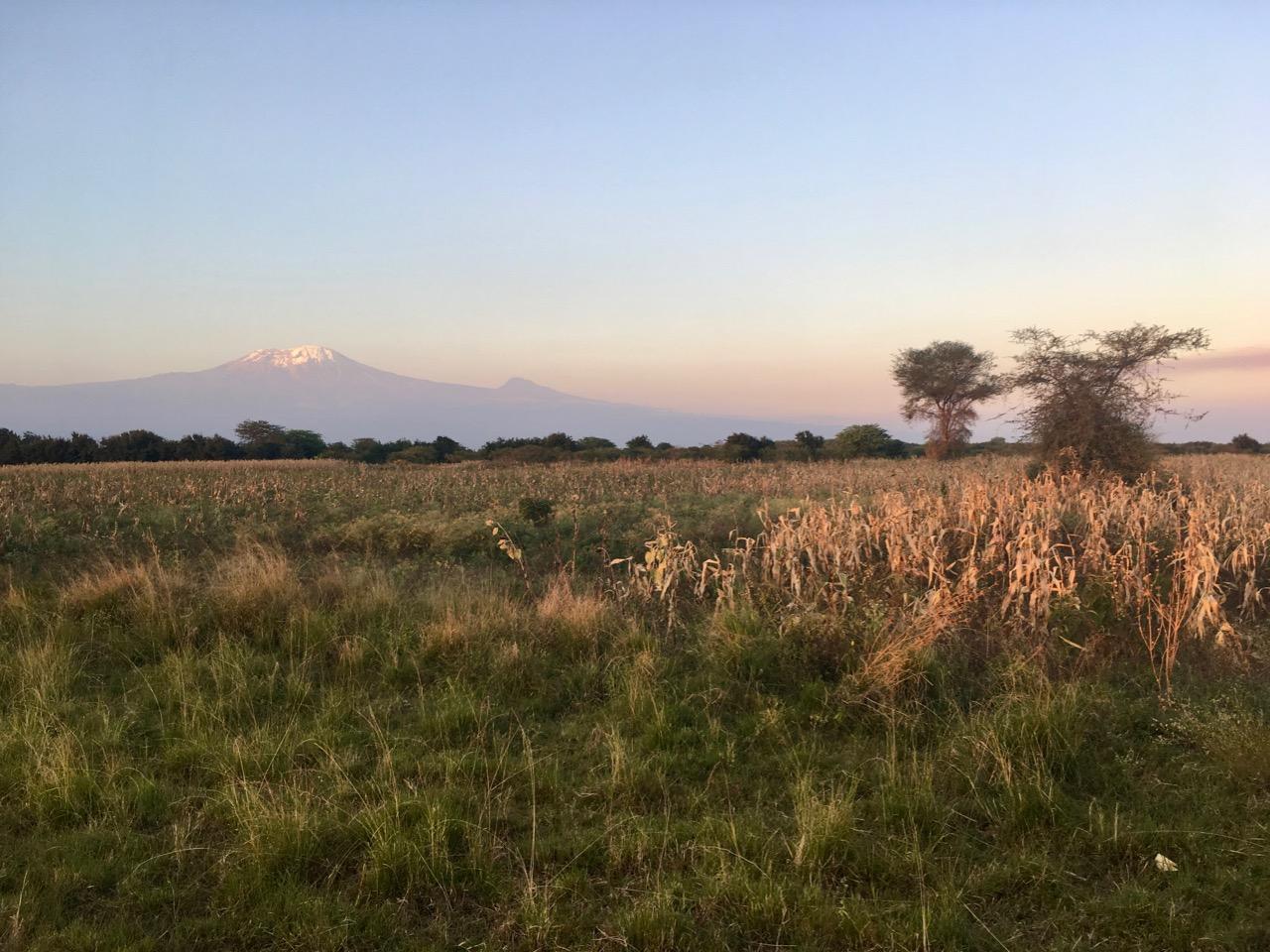 Tanzania chegada 1 03