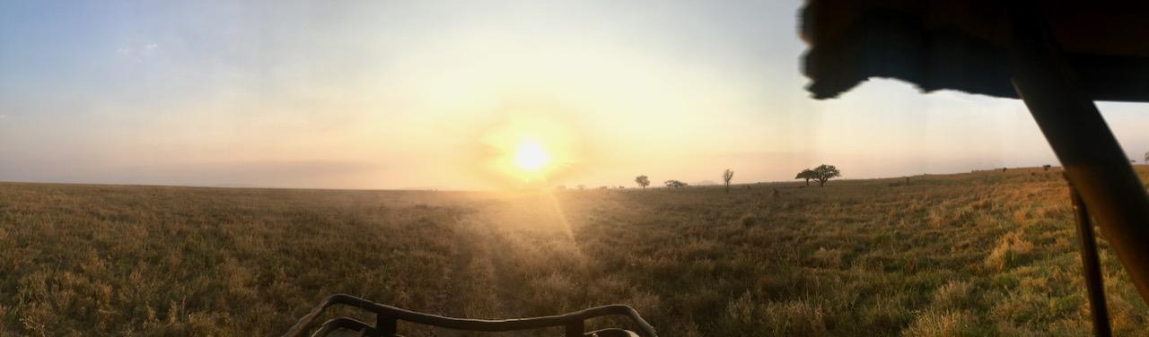 Dicas safari Tanzania 1 02