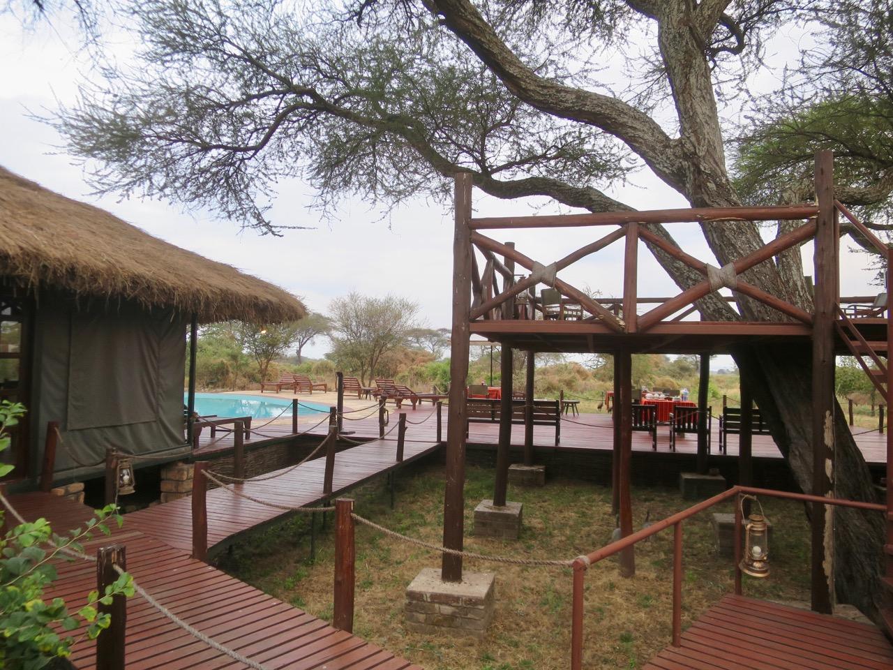 Dicas safari Tanzania 1 04