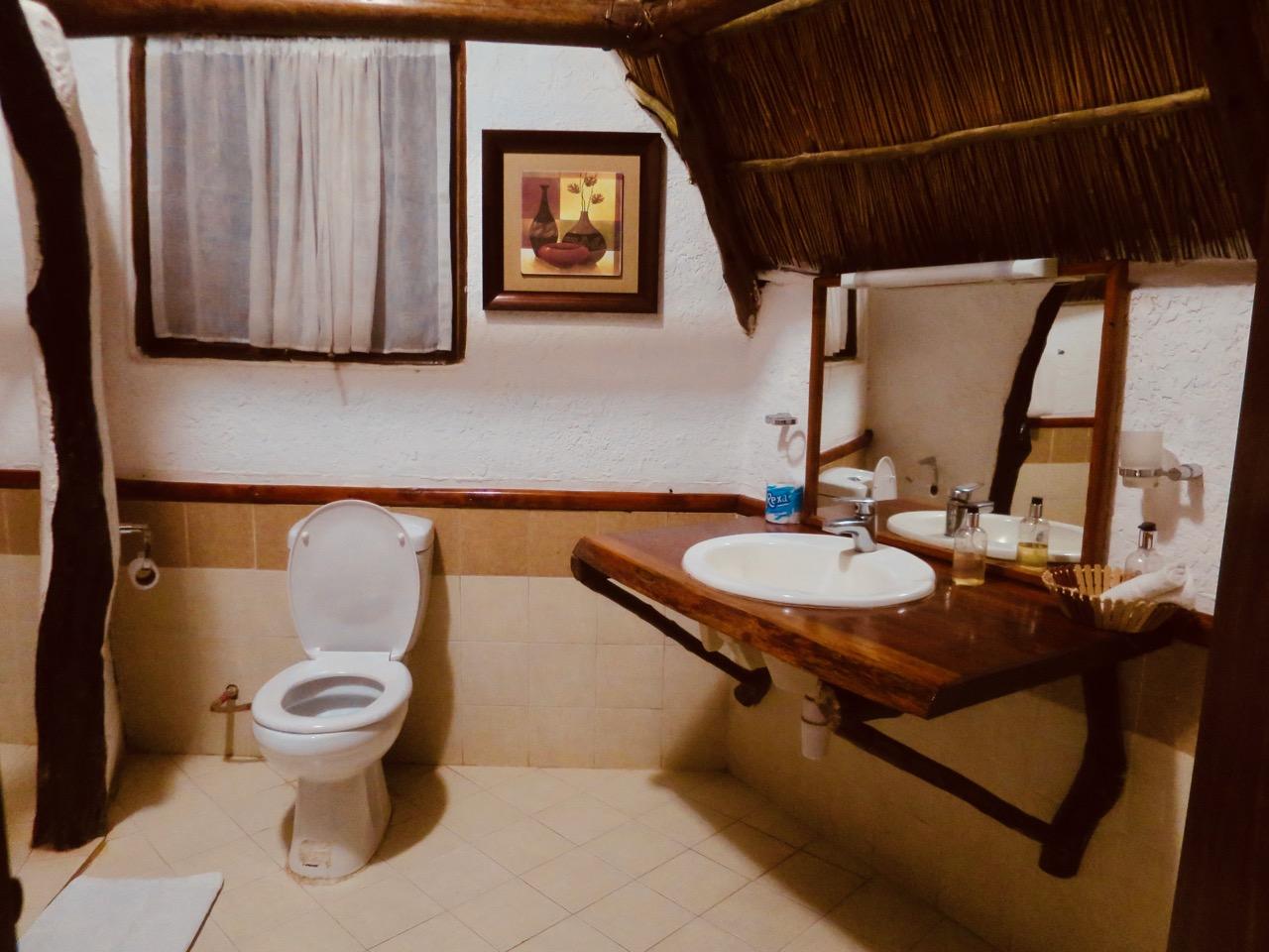 Dicas safari Tanzania 1 05