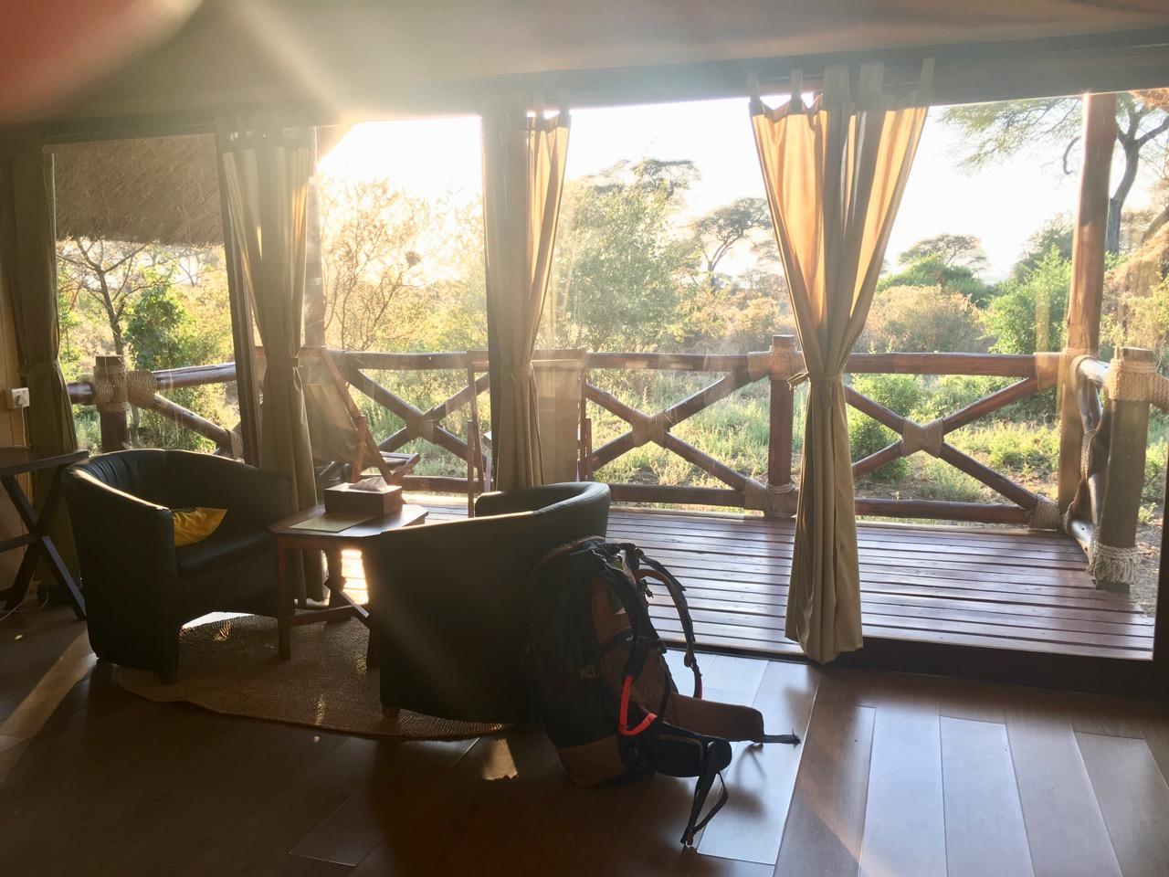 Dicas safari Tanzania 1 06