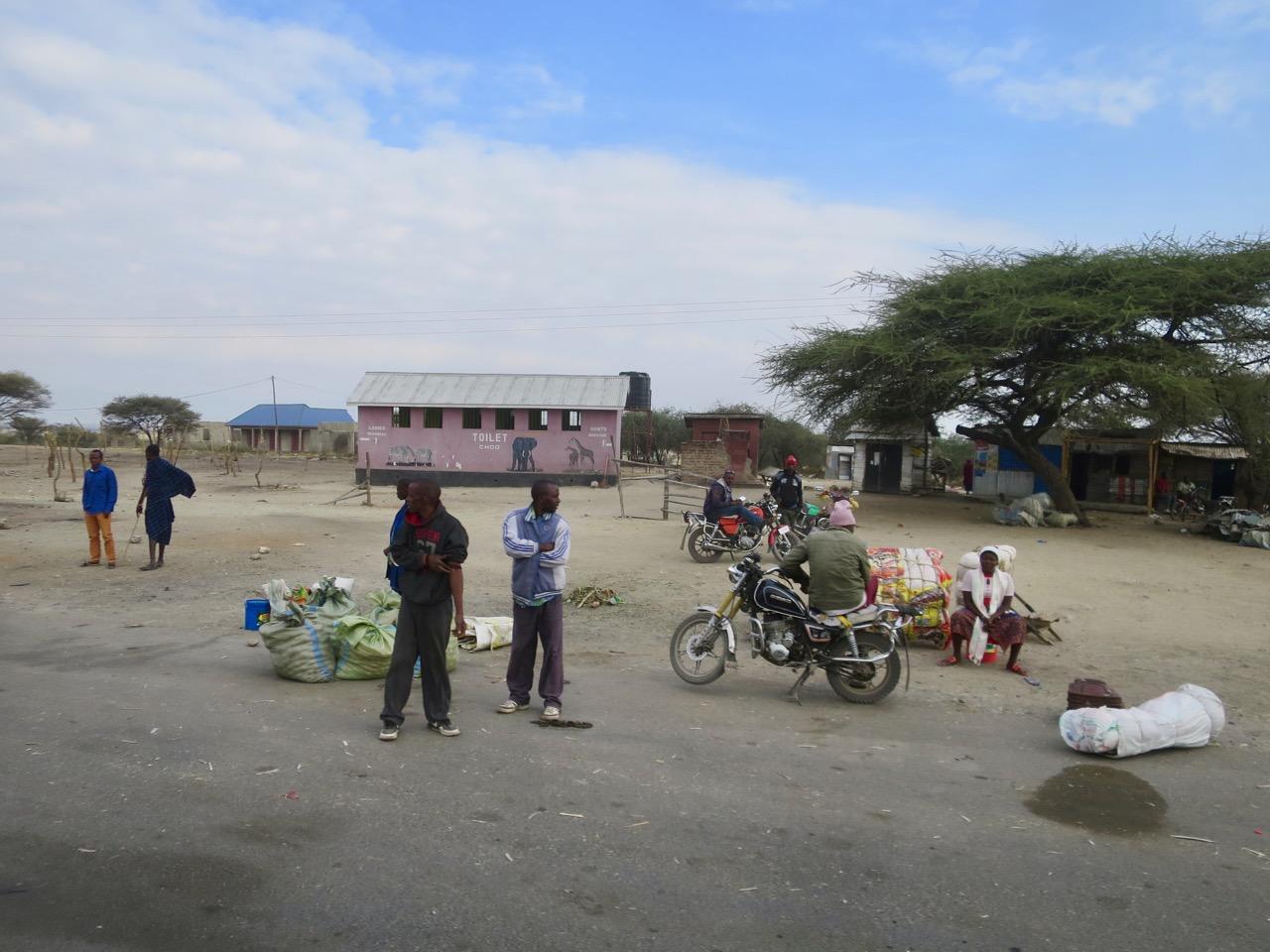 Lake Manyara 1 13