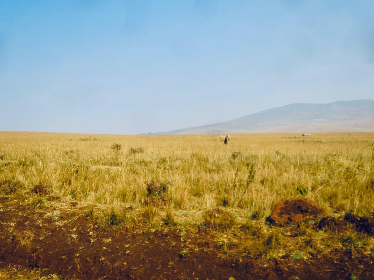 Maasai 1 14