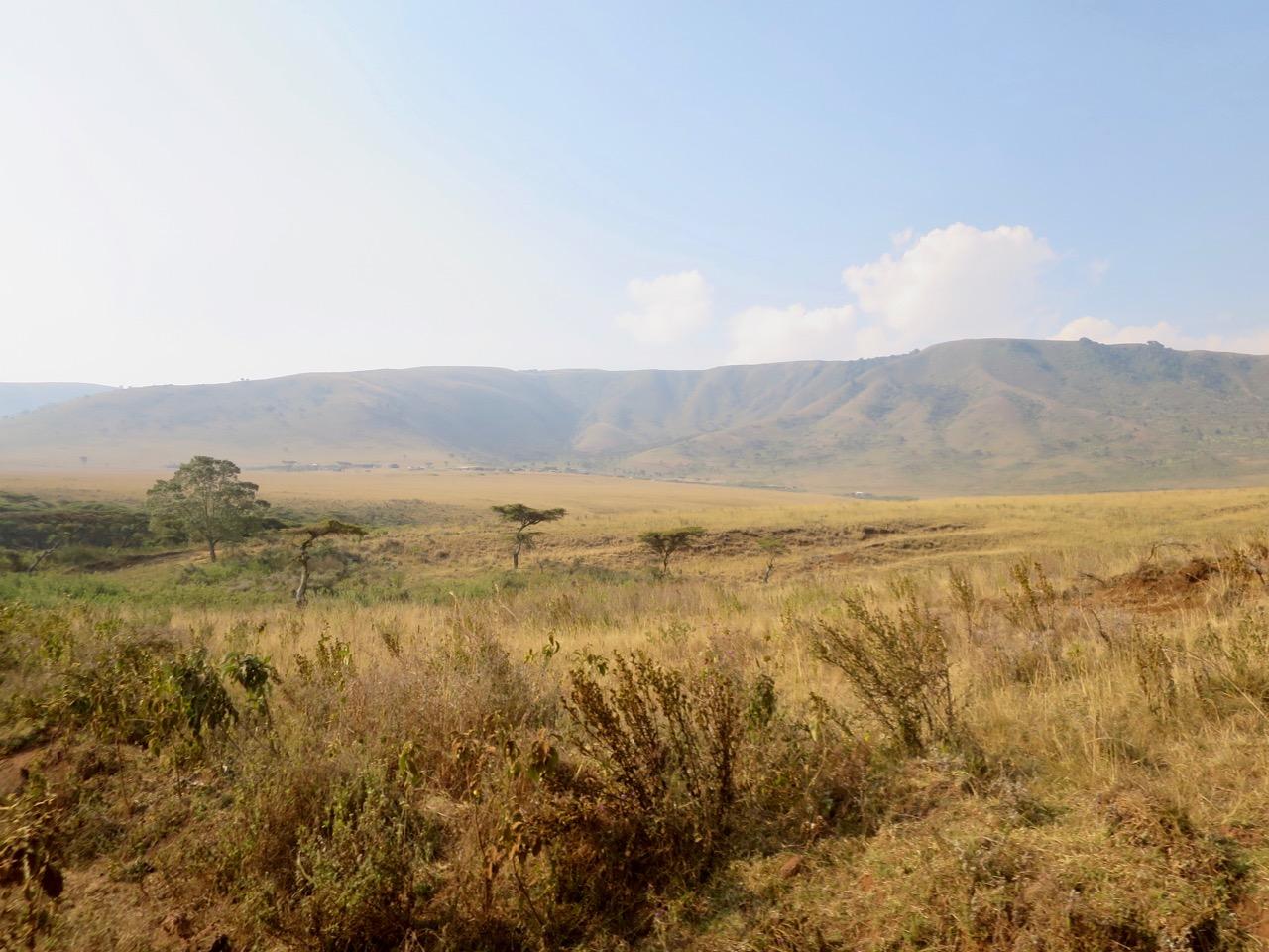 Maasai 1 15
