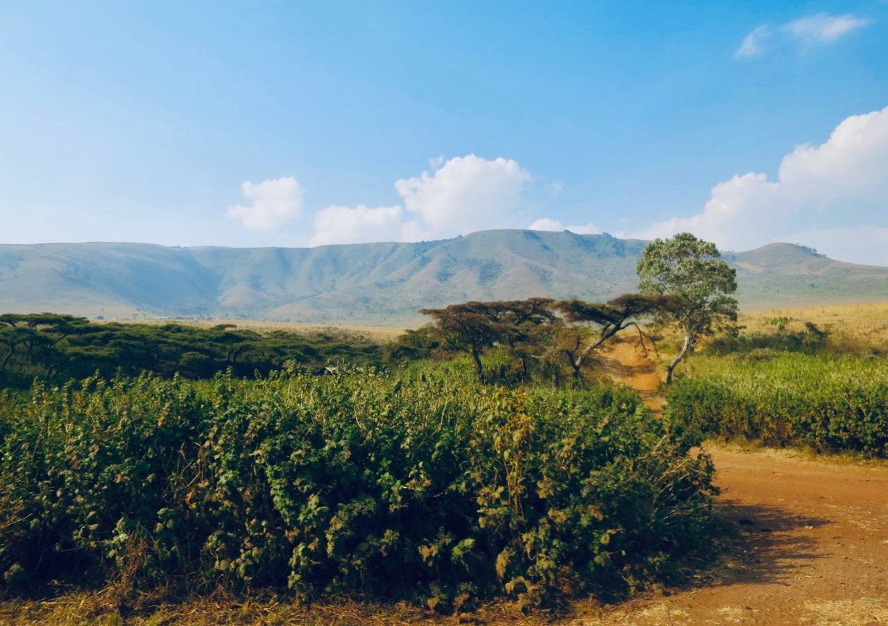 Maasai 1 18