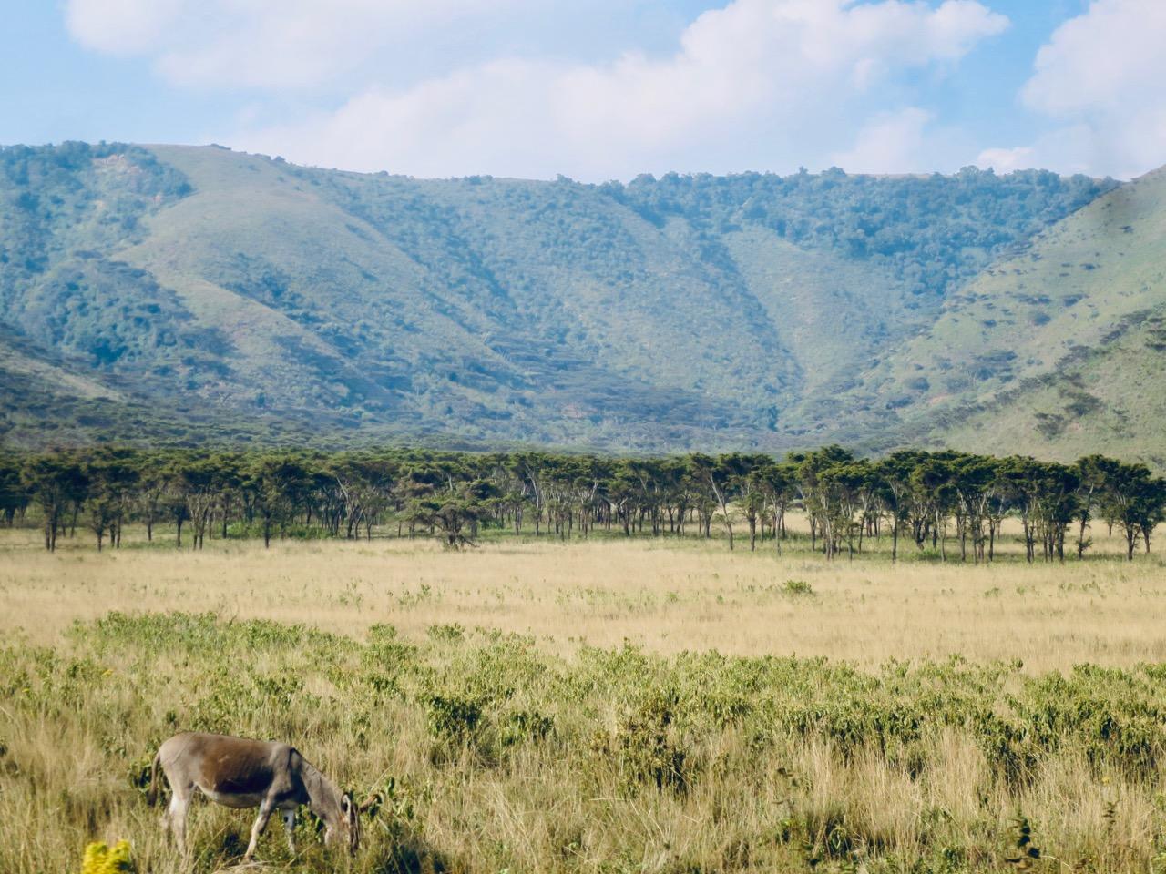 Maasai 1 34