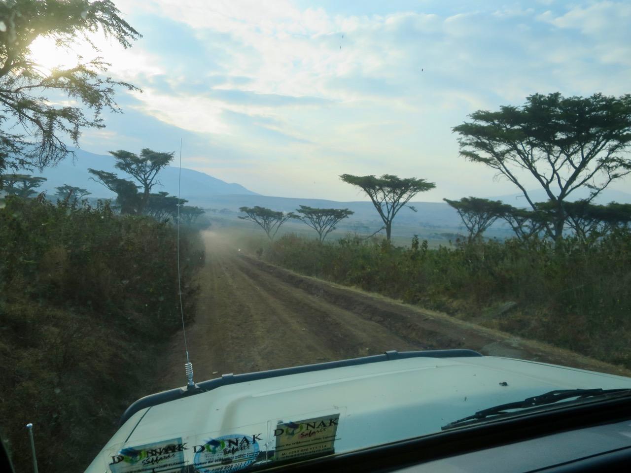 Ngorongoro 1 07