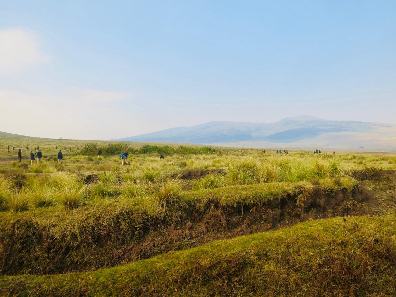 Ngorongoro 1 12