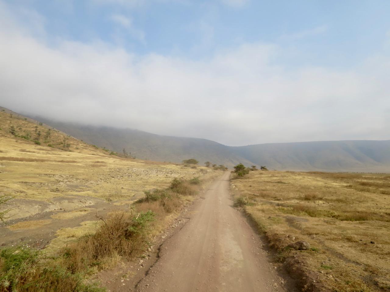 Ngorongoro 1 14
