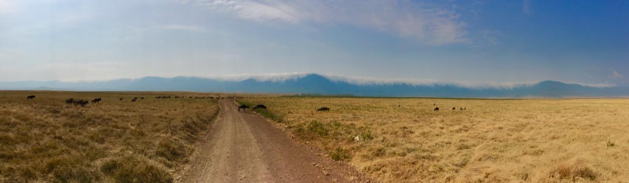 Ngorongoro 1 38